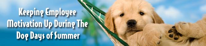 dogdays_banner (1)